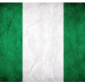 Nigerian-Flag feature