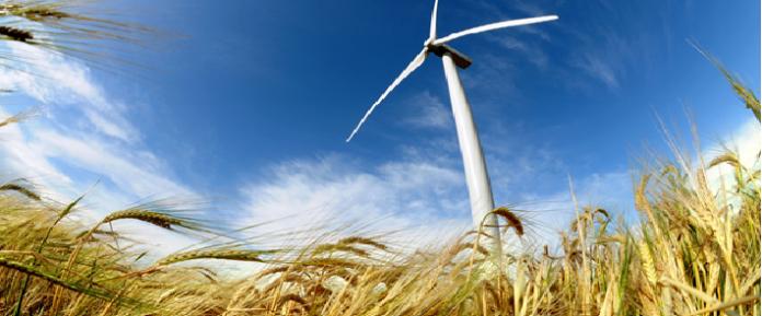 renewable wind farm