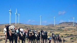 Adama wind farm. Pic credit AFP