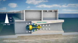 Tidal Lagoon Power said the proposed turbines will have a runner diameter (span of the turbine blades) of 7m and will be permanently submerged below the low water level