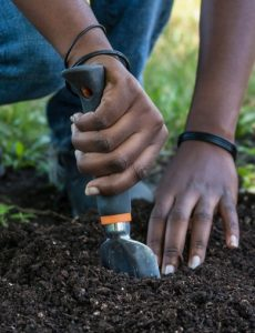 Eskom supports emerging farmers through its corporate social investment initiative. Pic credit: Green fuse stock
