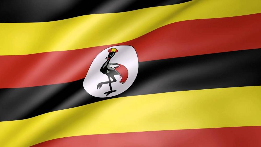Future Energy Uganda