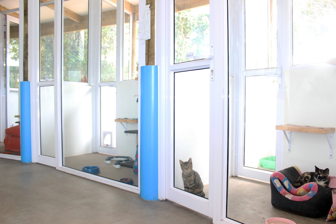 Energy efficient building home to stray, unwanted animals in search of homes. Pic credit: SPCA