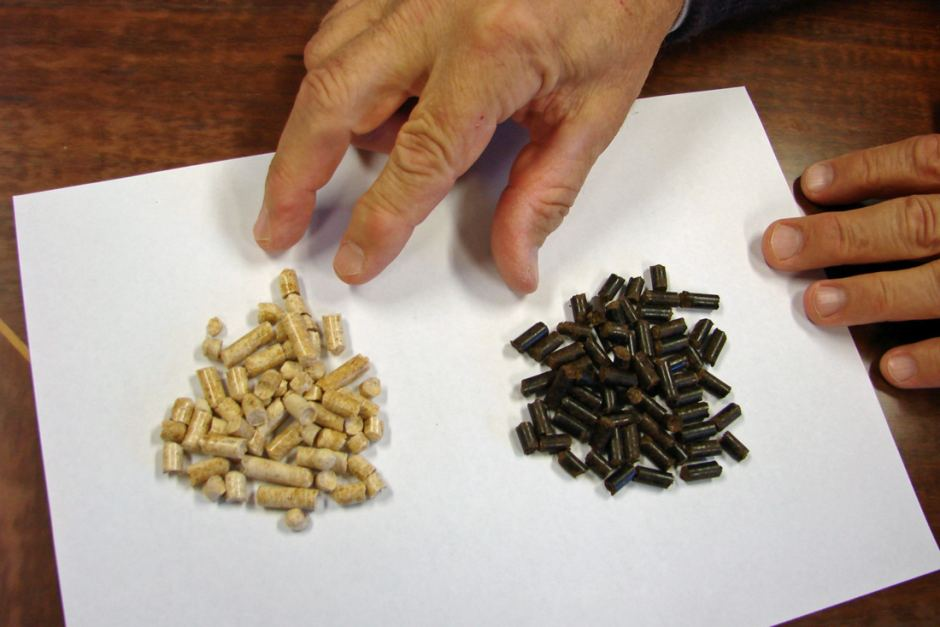 Wood pellets. Source: ABC Rural, Rose Grant.