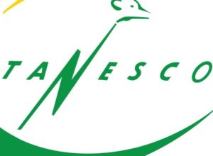TANESCO logo Pic credit: Mpekuzi