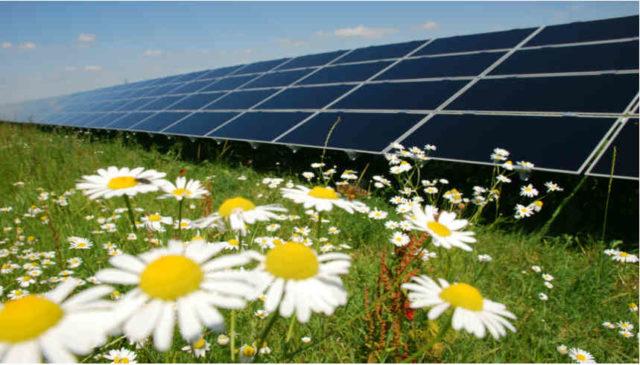 Infinity 50 Solar Park
