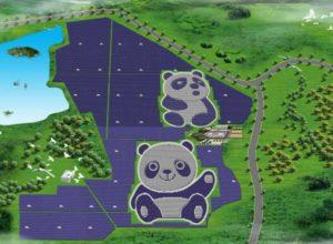 Panda Power Plant. Photo: Panda Green Energy Group Limited