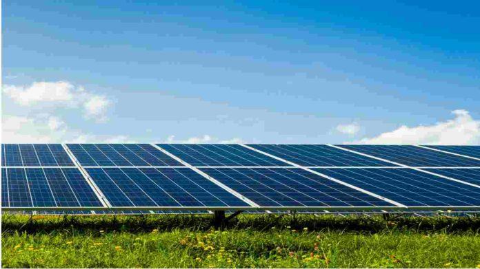 Mozambican renewable energy entrepreneur