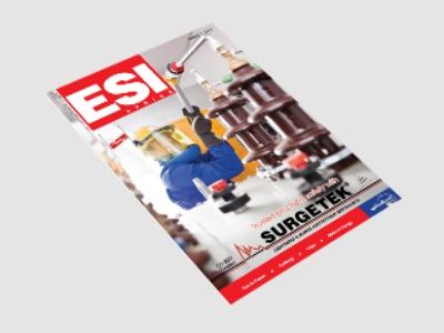 ESI 2013 Issue 3 Cover