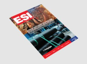 ESI 2013 Issue 4 Cover