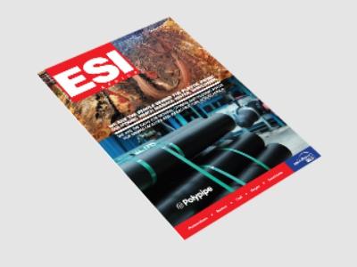 ESI 2013 Issue 4 Cover