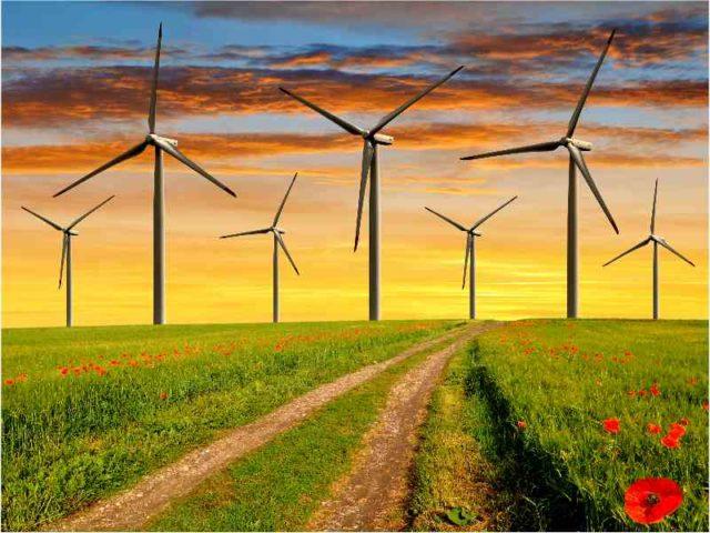 Nxuba wind farm