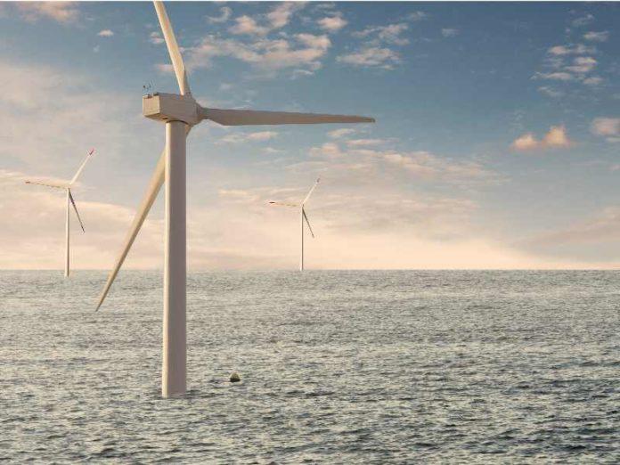 offshore wind farm development