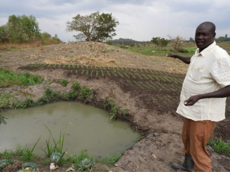 Uganda Solar Irrigation Solution Enables Agricultural