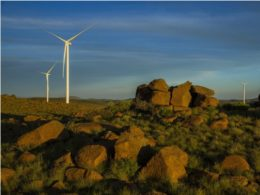 wind contracts