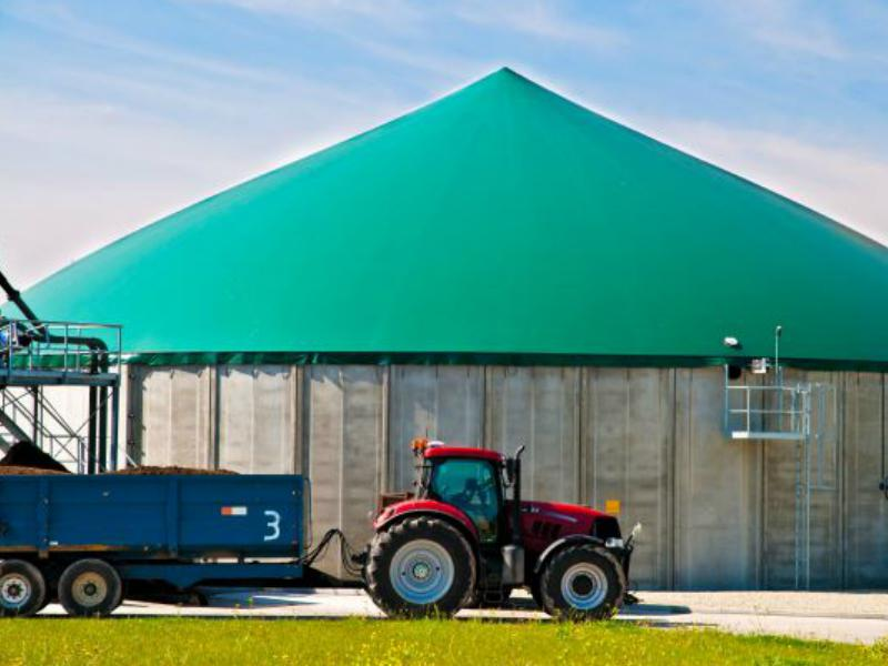 Biogas. Alternative energy.