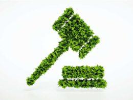DEFF environmental assessments
