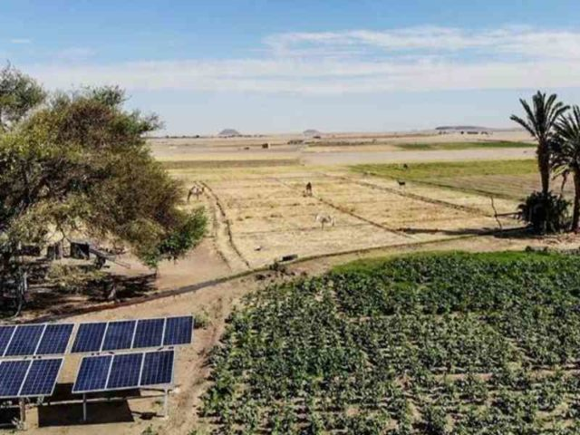 solar for agriculture