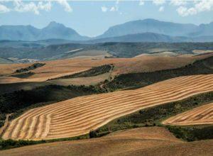 Eskom accepts municipality's farmland as security on R2.5bn debt
