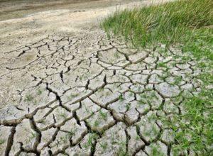 Niger climate change