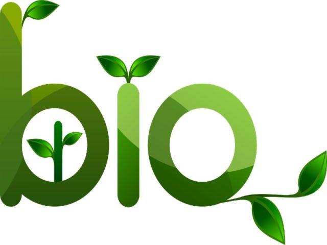 clean future bio fuels