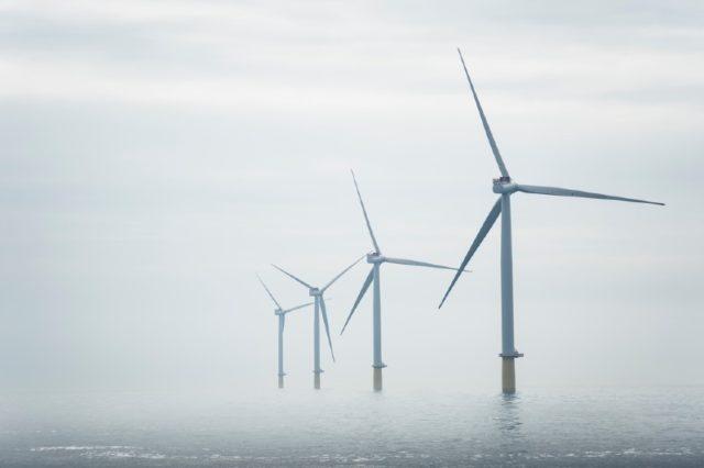 net-zero wind farm