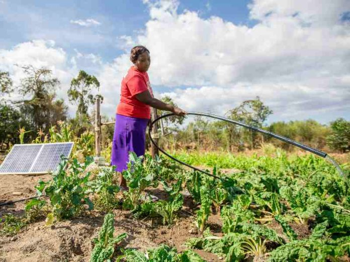 solar powered farming