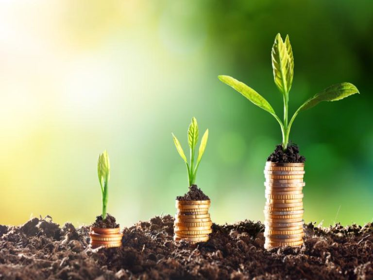 $1.2m Innovation Fund to back sustainable projects in Africa