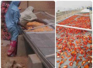 Nigeria agribusiness