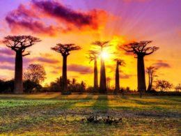 Africa's energy