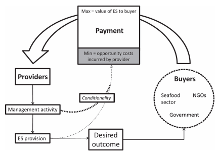 Demonstration of how a PES system would operate in the fishing sector.