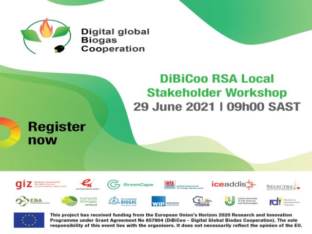 DiBiCoo 800 x 600 banner