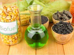 biofuel kenya