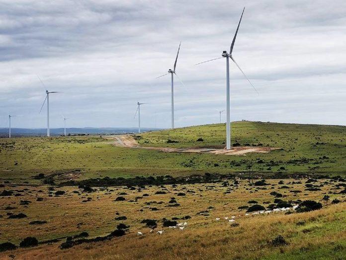 wind farm Wesley-Ciskei