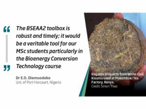 非洲生物能源、研究和工具箱的大日子