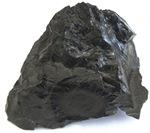 Coal article 3