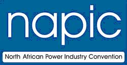 NAPIC logo